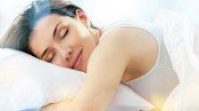 Dược liệu giúp bạn ăn ngủ ngon hơn mỗi ngày